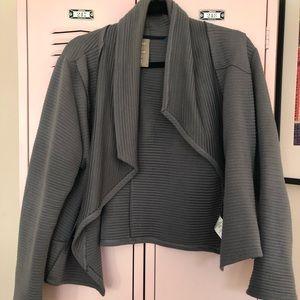 Anthro Grey Moto Ribbed Sweater